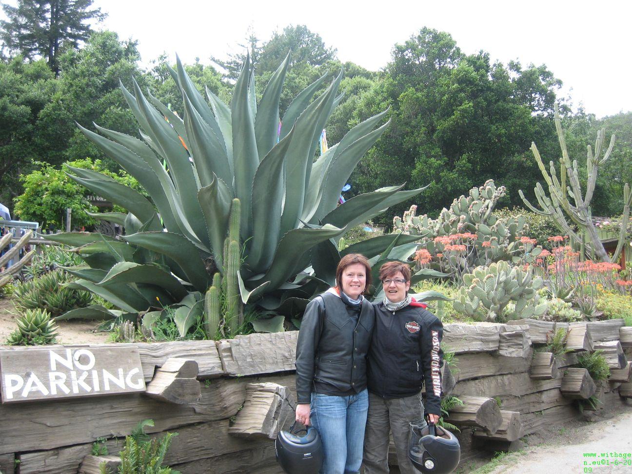 bj de tankstop bij Big Sur stonden geweldige agaves